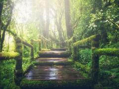 adventure-1807476_640