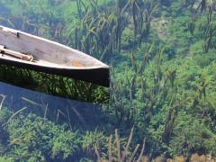 canoe-582659_640