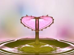 drop-of-water-2195585_640