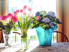 flowers-2239232_640